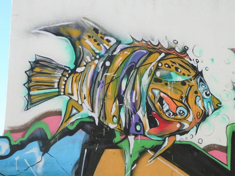 Kleurrijke vis - detail muurschildering