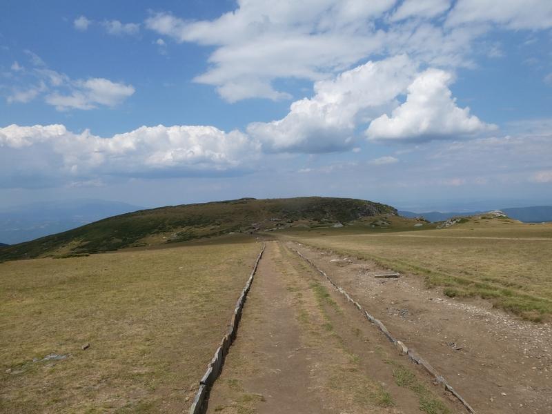 Kaarsrecht pad met aan weerzijden een randje van opstaande platte stenen.
