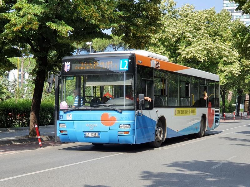Friese lijnbus - herkenbaar aan blauw-wit-rode kleuren en rode plompebladen.